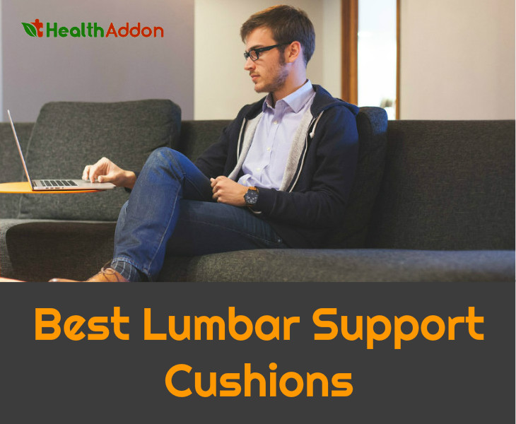 best lumbar support cushions