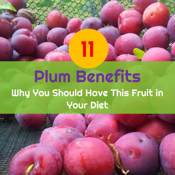 11 Plum Benefits Why You Should Have This Fruit in Your Diet